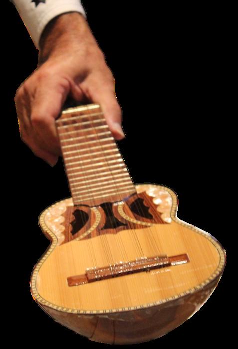 forcutout-pepe-charango